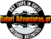 Safari Adventures Logo